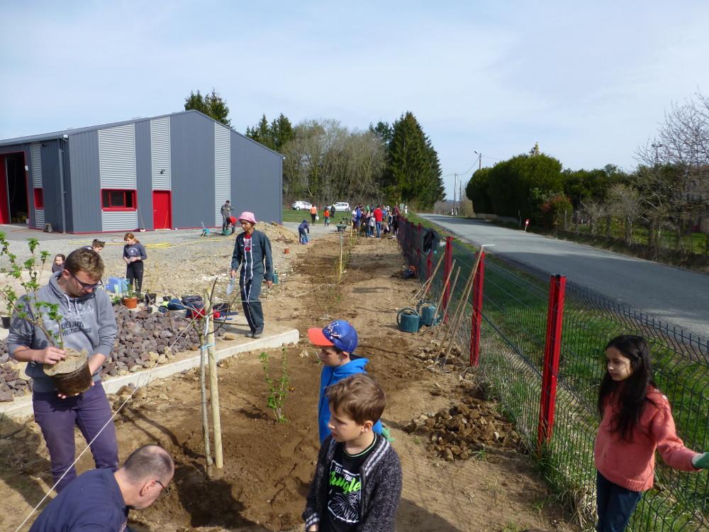 Plantation de la haie avec lycéens et écoliers.