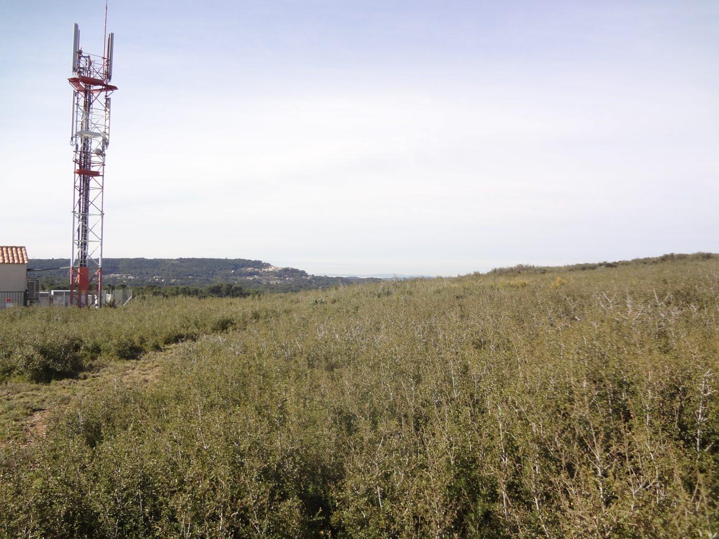 Terrain d'implantation de la centrale solaire Solaris Civis